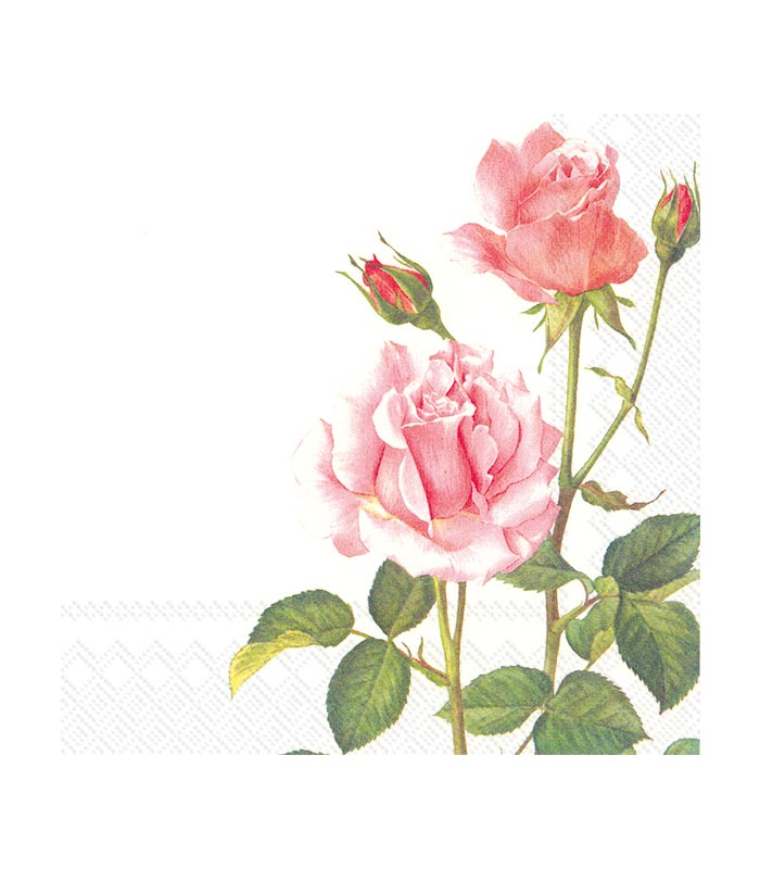 ihr Servetter A Rose For You