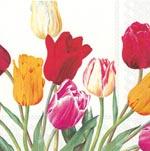 ihr Servetter Tulips